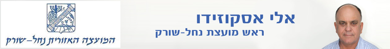 אלי אסקוזידו