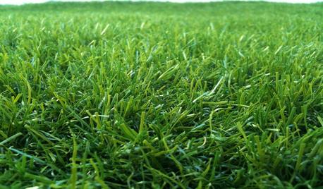 דשא סינטטי לפרויקטים - בעלי מקצוע מומלצים